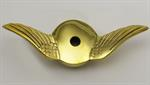 Model T Gull wing radiator cap, brass swept back wing style - 3926GWB